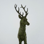 Stag-A